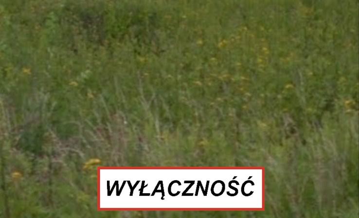 parcel for sale - Czosnów, Sowia Wola